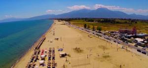 Olympic Beach 2020